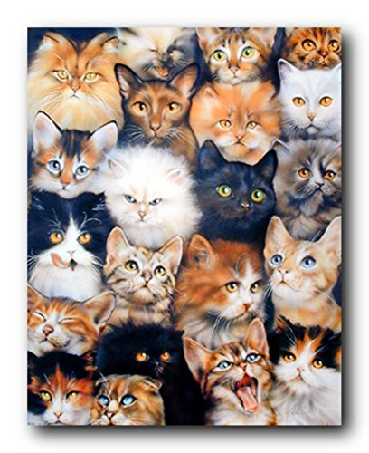 Cute Cats Breed Collage Pet Animal Kittens Wall Decor Art Print Poster  16X20