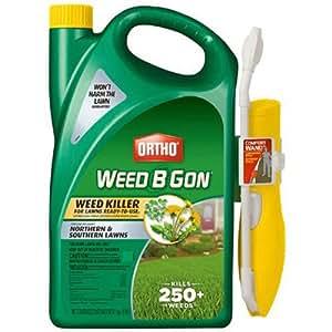 Ortho Weed B Gon Weed Killer, RTU Wand 1-gallon