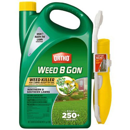 Ortho Weed B Gon Weed Killer, RTU Wand 1-gallon (Best Weed Killer To Kill Creeping Charlie)