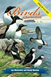 Birds of Newfoundland: Field Guide
