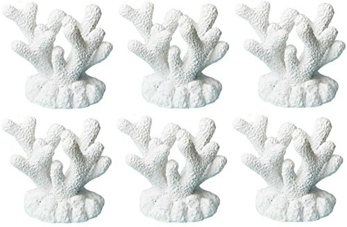 Tropical Coral Beach Themed Wedding Reception Place Card Holder or Food Marker (Set of 6)
