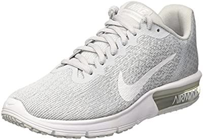Nike Air Max Sequent 2 Pure Platinum/White/Wolf G 5.5 M(B) US
