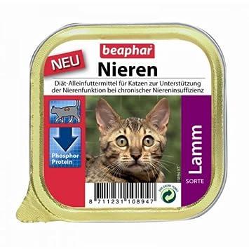 Beaphar gato Riñón Dietas + Cordero 16 x 100 g: Amazon.es: Productos para mascotas