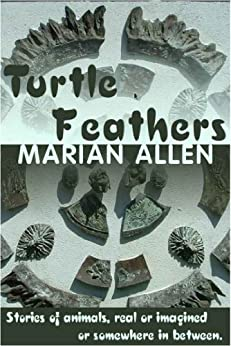 Turtle Feathers by [Allen, Marian]