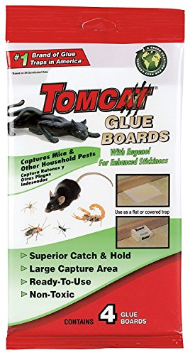 Tomcat Glue Boards (Captures Mice and Other Household