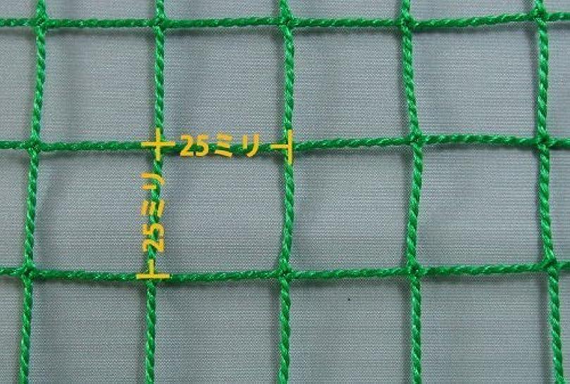 オーバーヘッド前文生クイックプレイ マルチスポーツ用 大型集球ネット クイックヒット 2.4m×2.4m ゴルフ 軟式野球 テニス等 バッティングネット 8QH