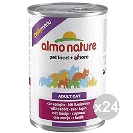 Almo Nature Juego 24 Gato 160 Lata Gr 400 Conejo Daily Comida para Gatos: Amazon.es: Hogar