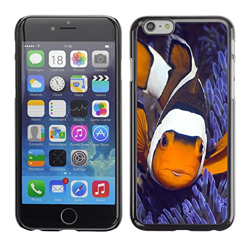 Premio Sottile Slim Cassa Custodia Case Cover Shell // V00003149 poisson clown // Apple iPhone 6 6S 6G PLUS 5.5""