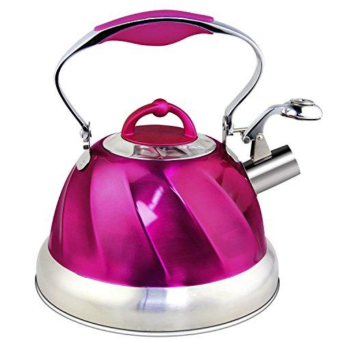 Riwendell Stainless Steel Whistling Tea Kettle 2.6-Quart StoveTop Kettle Teapot (Purple)](Stovetop Purple Tea Kettle)