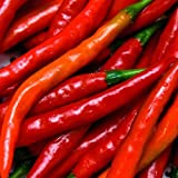 Cayenne Red Long Pepper - 100 Seeds -GARDEN FRESH PACK!