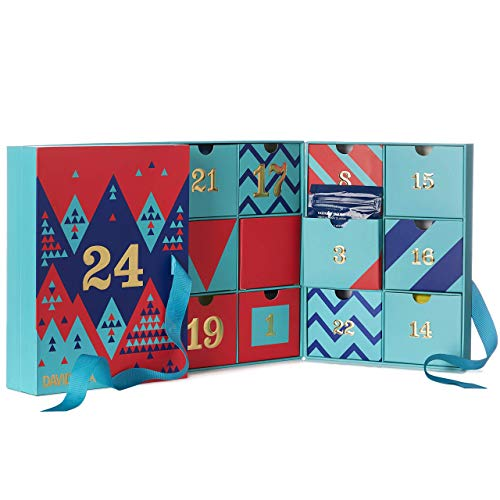 DAVIDsTEA 24 Days of Tea Advent Calendar 2019, Loose Leaf Tea Sampler, Count Down to the Holidays with 24 Teas and Infusions