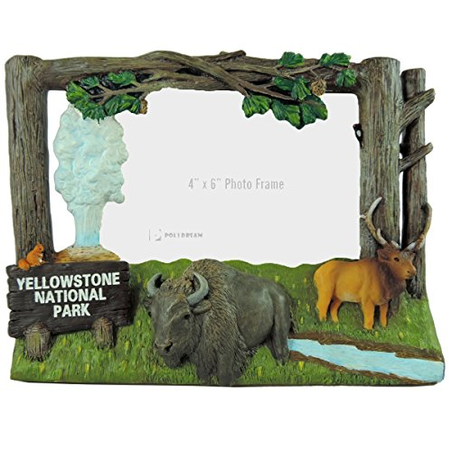 Yellowstone National Park Photo Frame