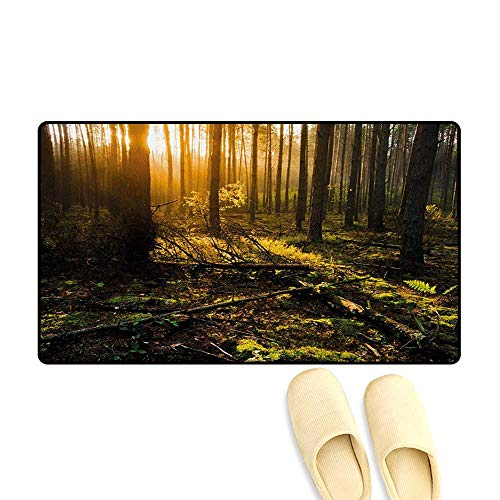 Bath Mat,Misty Morning in The Forest with Sun Rays Mother Earth Foliage Dawn Picture,Door Mats Area Rug,Brown Fern Green,16