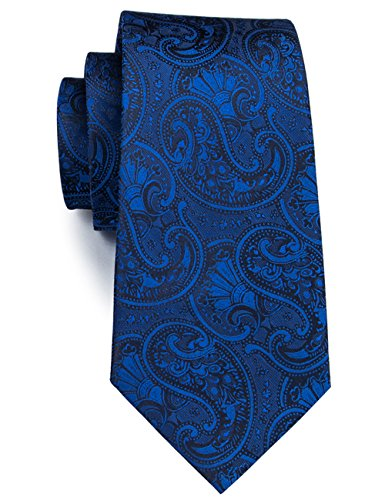 Barry.Wang Business Ties Paisley Blue Classic Neckties Party Wedding Tie Floral