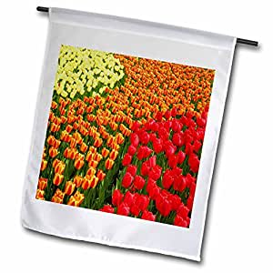 Yves Creations Florals and Bouquets - Fall Tulips - 12 x 18 inch Garden Flag (fl_77015_1)