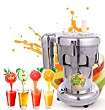 Commercial Fruit and Vegetable Juicer Extractor Juicer 110v 750w