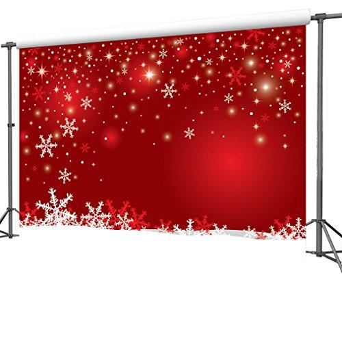 DULUDA Snowflackes Photography Customized Background product image