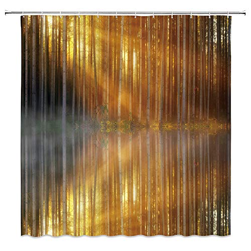 - Nature Shower Curtain,Foggy Birch Grove Light and Shadow Interlaced Lake Reflection Bathroom Decor Set with Hooks,71X71 Inchs,Polyester,Gold Gray
