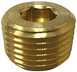 MettleAir 118-A 1/8'' NPT Male Brass Countersink Pipe Plug/End/Bung/Stop/Seal (Pack of 10)