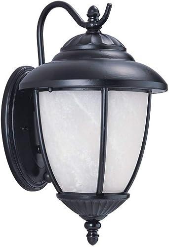 Sea Gull Lighting 84050P-12 Yorktown Outdoor Wall Sconce, Black