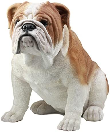 Ebros Large Lifelike Realistic English Bulldog Statue 14.5″ Tall Fine Pedigree Dog Breed Collectible Decor