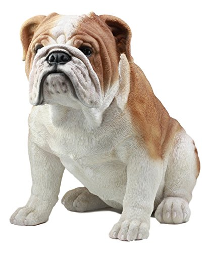 Ebros Large Lifelike Realistic English Bulldog Statue 14.5