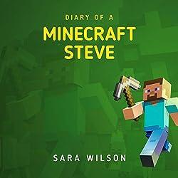Diary of a Minecraft Steve 1