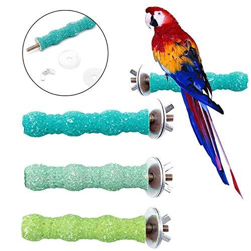 Pet Bird - 1 Pc Pet Bird Parrot