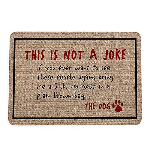 Doormats 16 x 24 Inch, Yezijin Letter Funny Welcome Home Entrance Floor Rug Non-Slip Doormat Outdoor Mat (H) -
