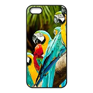 Attractive parrot Cell Phone Case for iPhone 5c