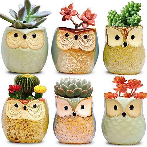 ATDAWN Owl Planter, 2.5 Inch Owl Pot, Succulent Plant Pot, Cactus Plant Pot, Flower Pot Container, Ceramic Flowing Glaze Base Serial Set, Planter Bonsai Pots with A Hole (6 Pack)