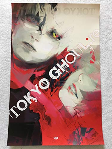 TOKYO GHOUL D/S 11