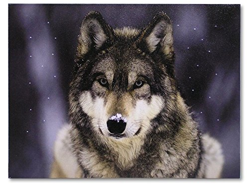 Gray Wolf Print - Wolf LED Lighted Canvas Picture - Wildlife Home Decor - Lone Grey Wolf Staring