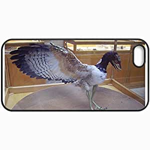 Customized Cellphone Case Back Cover For iPhone 5 5S, Protective Hardshell Case Personalized Archaeopteryx Black