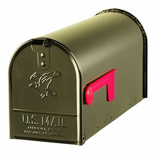Hand Painted Rural Mailbox (Gibraltar E100BZ0 Standard Size Galvanized Steel Rural Mailbox, Bronze, New)