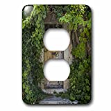3dRose Andrea Haase Nature Photography - Old door covered with vegetation in France - Light Switch Covers - 2 plug outlet cover (lsp_266546_6)