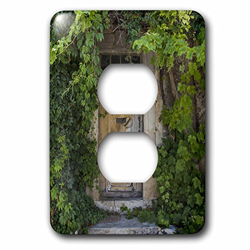 3dRose Andrea Haase Nature Photography - Old door covered with vegetation in France - Light Switch Covers - 2 plug outlet cover (lsp_266546_6) by 3dRose