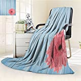 Nalohomeqq Rustic Style Custom Blanket Turquoise Vintage Barn Wood with Hot Pink Daisy Flower Retro Pop Artsy Design Accessories Collection Microfiber FabricPink and Blue