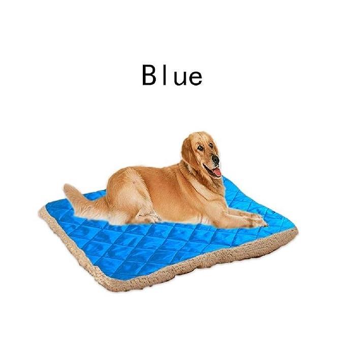Mascota Perro Gato Cama Cachorro Cojín Casa Mascota Suave Y Caliente Perrera Perro Estera Manta,Blue,100Cmx80cm: Amazon.es: Ropa y accesorios