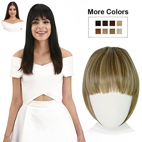 REECHO Fashion Full Length Synthetic 1 Piece Layered Clip in Hair Bangs Fringe Hairpieces Hair Extensions Color - F10/22