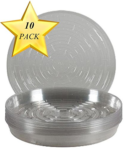 (Curtis Wagner VL-10-10PK 715007143314 Round Clear Vinyl Plant Saucer, Pack of 10)