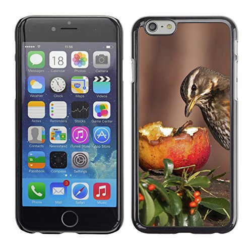 Premio Sottile Slim Cassa Custodia Case Cover Shell // F00004947 oiseau et pomme // Apple iPhone 6 6S 6G PLUS 5.5""