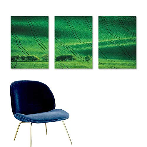 Agoza Europe Canvas Pictures Rolling Sunny Hills with Meadow Fields and Trees Southern Moravia Oil Canvas Painting Wall Art 3 Panels 16x24inch Czech Republic Print Emerald