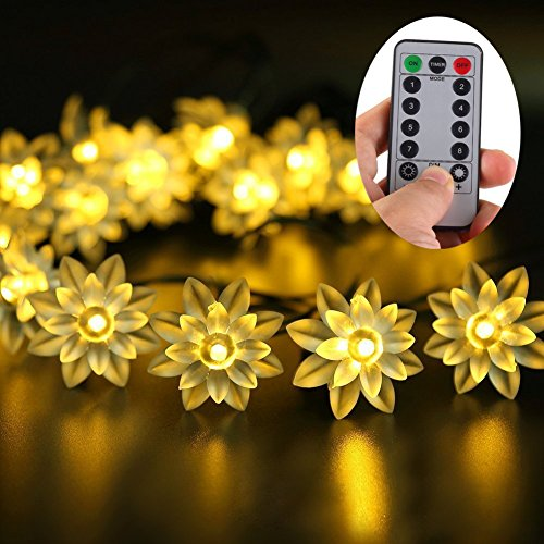 Flower Led Lights String in Florida - 4