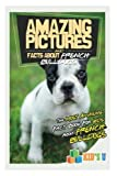 img - for Amazing Pictures and Facts About French Bulldogs: The Most Amazing Fact Book for Kids About French Bulldogs (Kid's U) book / textbook / text book