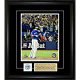 Frameworth 69-459 Jose Bautista 8x10-Inch Pin and Plate Frame-Bat Flip Toronto Blue Jays