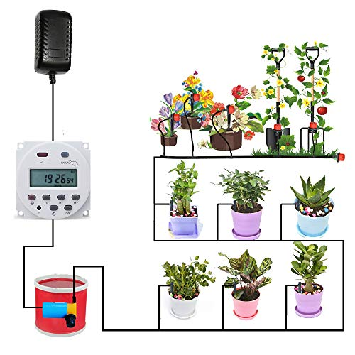 (AiHihome Automatic Watering System with Digital Timer 12V DC Switch Auto Irrigation for Indoor Plant)