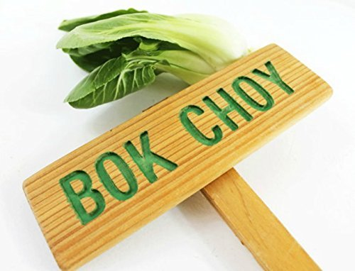 bok-choy-garden-sign-cedar-wood-hand-routed-carved-wood-signs-vegetable-plant-garden-markers-custom-
