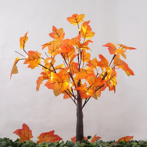 - FLCSIed 24 LED Lighted Tabletop Fall Maple Tree with Warm White LED Lights, Perfect Fall Thanksgiving Decoration