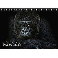 Gorilla (Tischkalender 2019 DIN A5 quer): Gorillas, sensibel und nah fotografiert, kunstvolle und ausdrucksstarke Tierportraets (Monatskalender, 14 Seiten ) (CALVENDO Tiere)